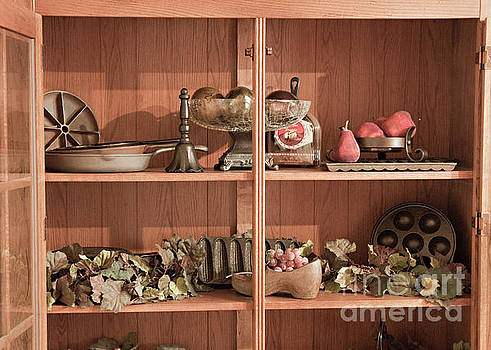 Display Cabinet of Cast Iron by Sherry Hallemeier