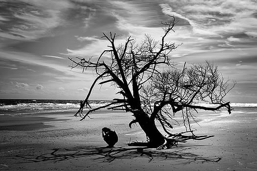 Distress by Lj Lambert