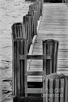 Dock on the Potomac by E B Schmidt