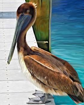 Dockside Pelican by Barbara Chichester