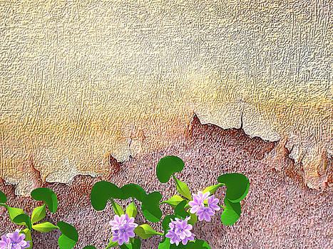 Dockyard Flowers by Jan Hattingh