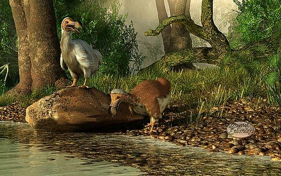 Daniel Eskridge - Dodos on the Riviere Tamarin