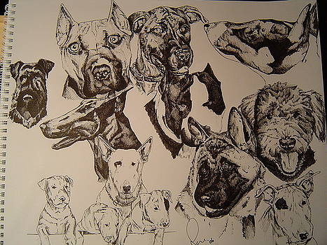 Dog Collage by Raymond Nash