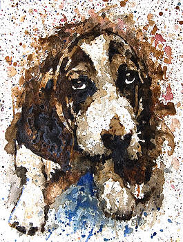 Dog by Ferah Wand