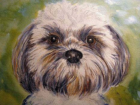 Dog Painting by Frances Gillotti