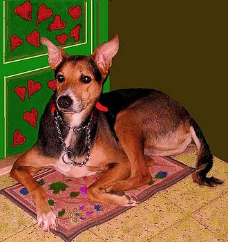 Xafira Mendonsa - Dog