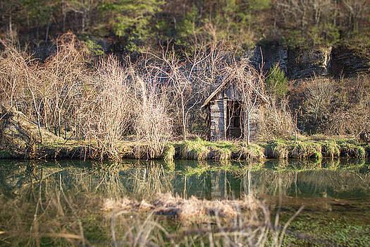 Dogpatch Cabin by Tammy Chesney