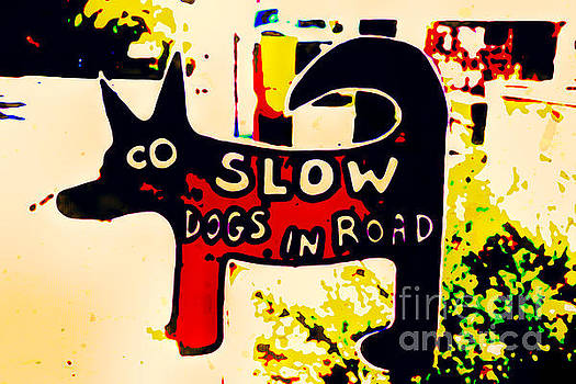 Dogs in Road by Lynn Sprowl