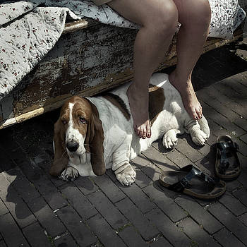 Dog's life by Michel Verhoef