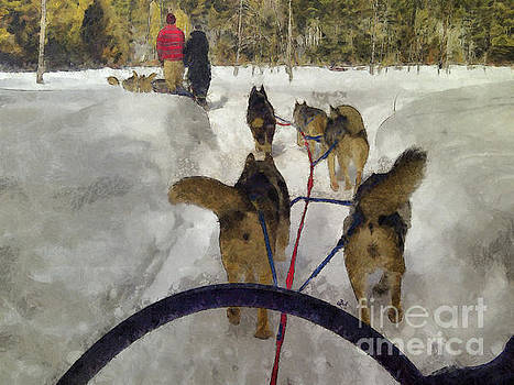 Dogsled Afternoon by Claire Bull