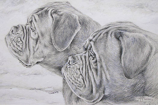 Dogue de Bordeaux by Keran Sunaski Gilmore