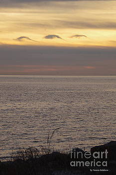 Tannis Baldwin - Dolphin cloud sunset