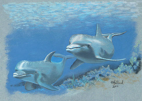 Dolphins by Charles Hubbard