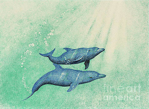 Dolphins by Wayne Hardee