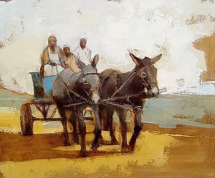 Donkey cart by Alida Bothma