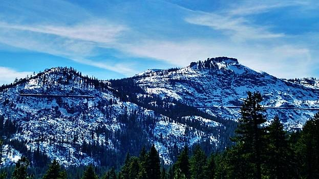Donner Summit by Peggy Leyva Conley