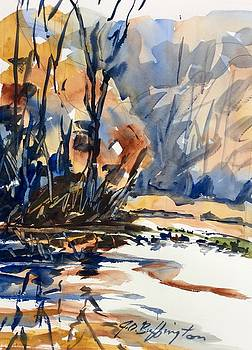Donny's Pond by JULES Buffington