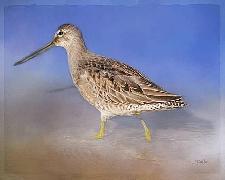 Don't Change - Wild Bird Art by Jordan Blackstone