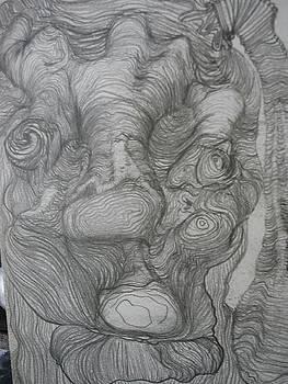 Doodle Head  by Paula  Heffel