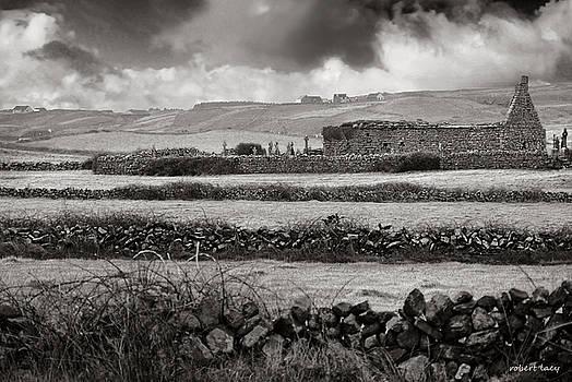 Robert Lacy - Doolan Fences