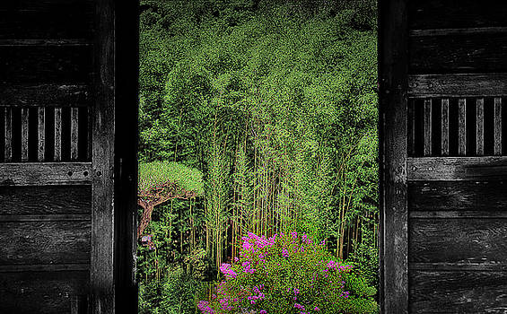 Doors to the Chinese Garden by Joseph Hollingsworth