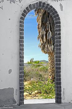 Cheryl Young - Doorway to the Desert