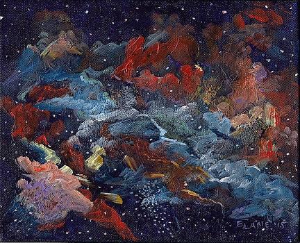 Doradus by Elizabeth Lane
