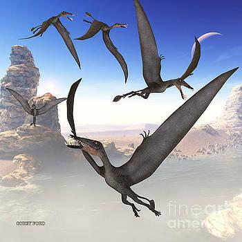 Corey Ford - Dorygnathus Flying Reptiles