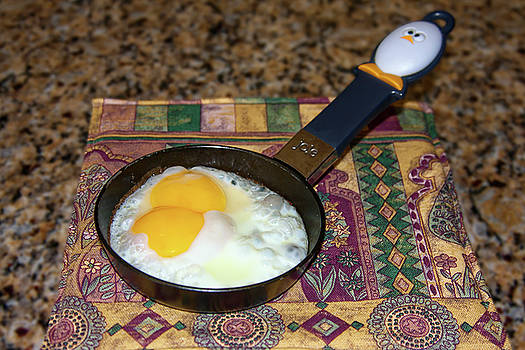 Double Yolk Egg by Sally Weigand