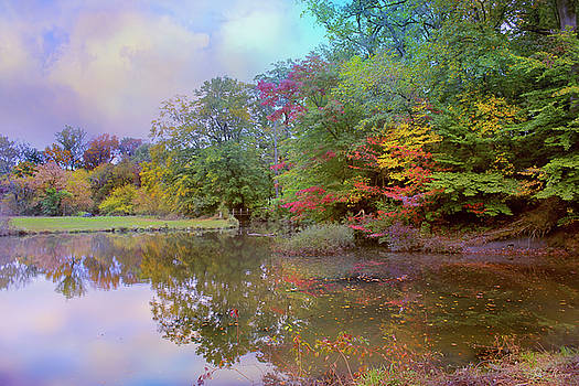 Down by the Pond by John Rivera