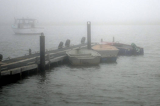 Downeast Misty Morning by Steven Scott