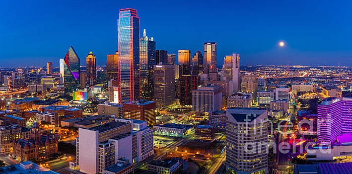 Downtown Dallas Panorama by Inge Johnsson
