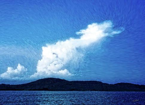 Draco Sky by Chas Sinklier