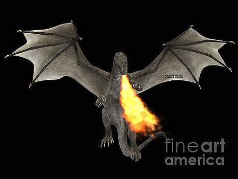 Corey Ford - Dragon Fire
