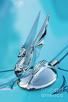 Flying Seahorse Hood Ornament - Classic Car by Gary Whitton