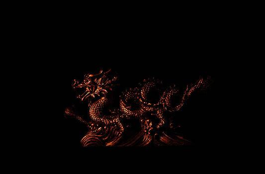 Dragon in shadows by Jouko Mikkola