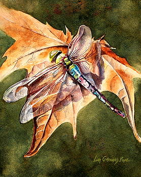 Dragonfly 2 by Lisa Pope