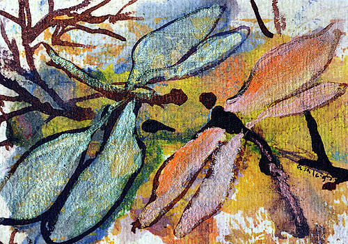 Dragonfly comfort is given by Ashleigh Dyan Bayer