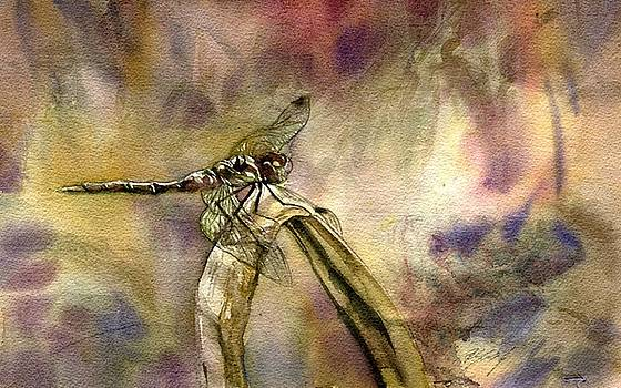 Dragonfly In Autumn by Alfred Ng