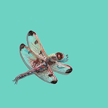 Dragonfly by Jude Labuszewski