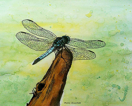 Dragonfly by Mamie Greenfield