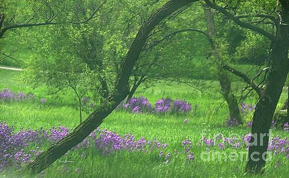 Dreaming fields  by Yumi Johnson