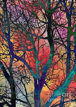 Dreamy Sunset by Klara Acel