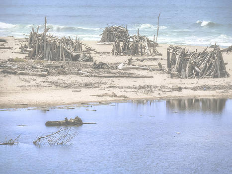 Dominic Piperata - Driftwood Houses in Summer Fog