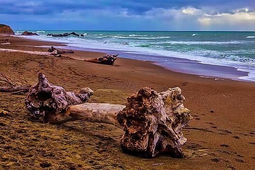 Driftwood Moonstone Beach by Garry Gay