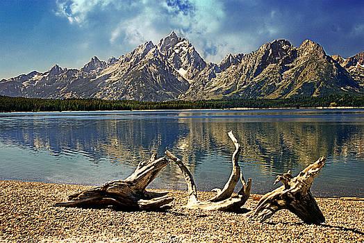 Driftwood Mountain by Marty Koch