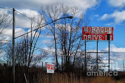 Drive-In For Sale by Jeff Holbrook
