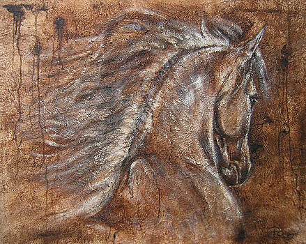 Driven by Paula Collewijn -  The Art of Horses
