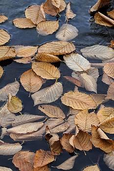 Drowning in Indigo _ 2 by Doris Potter