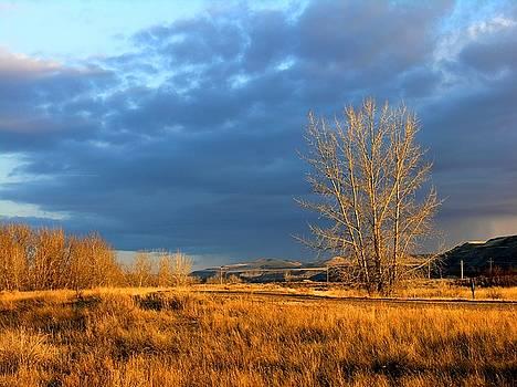 Drumheller Valley by Jim Justinick